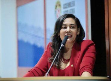 Deputada Dilvanda Faro é membro de comissões permanentes da Alepa.